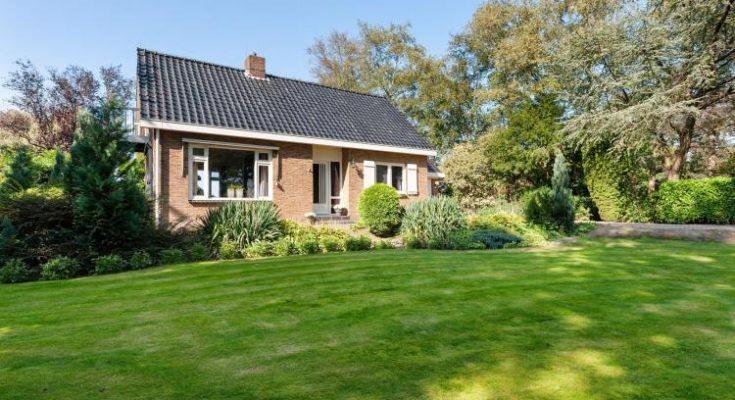De Drentsche Patrijs - NL-5204