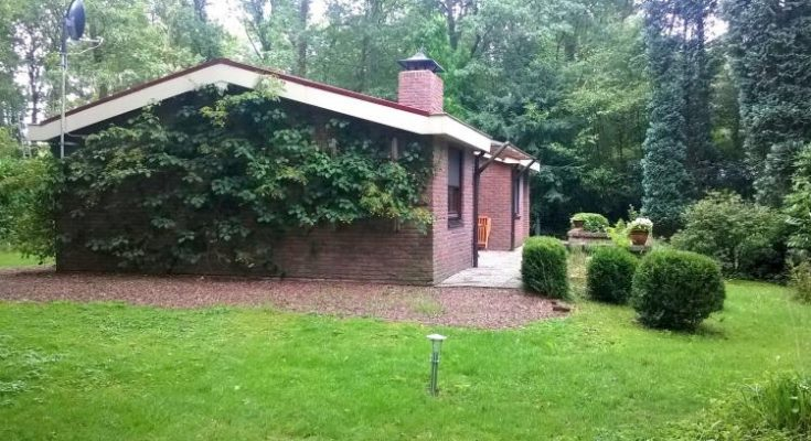 The Forest Cottage - NL-5233