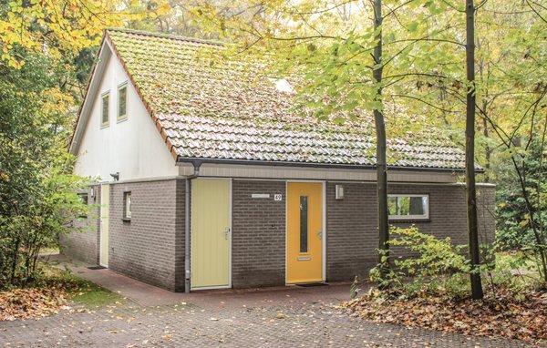 Kwikstaart - NL-8947